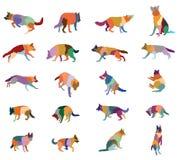 Ensemble de chiens colorés de vecteur Images stock