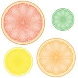 Ensemble de citron dans la part illustration de vecteur