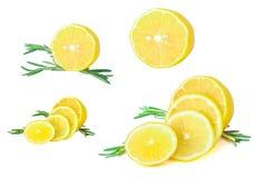 Ensemble de citrons frais avec le romarin Image libre de droits