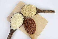 Ensemble de collection de riz sur la poche d'isolement sur le fond blanc image libre de droits