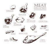 Ensemble de collection de viande grand illustration stock