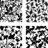 Ensemble de configuration sans joint de cru avec des orchidées Image libre de droits