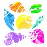 Ensemble de couleur avec des formes des coquilles de mer sur le fond blanc Vecteur Photographie stock libre de droits