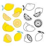 Ensemble de coupes de citron de vecteur, jaune et noir et blanc d'agrumes de vecteur illustration libre de droits