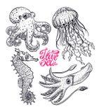 Ensemble de créatures de mer illustration de vecteur
