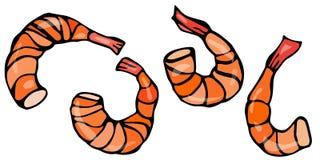 Ensemble de crevettes cuites Illustration réaliste de crevette rose de fruits de mer de vecteur Photos libres de droits