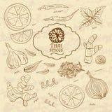 Ensemble de cuisines d'épices de la Thaïlande sur le vieux papier dedans illustration stock