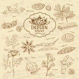 Ensemble de cuisines d'épices et d'herbes d'Inde sur vieux illustration de vecteur