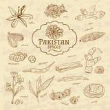 Ensemble de cuisines Pakistan d'épices et d'herbes sur vieux illustration de vecteur