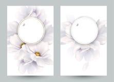 Ensemble de deux cartes d'invitation ou de félicitation avec la composition élégante en fleur Magnolias blanches de floraison for illustration libre de droits