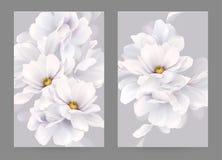 Ensemble de deux cartes d'invitation ou de félicitation avec la composition élégante en fleur Magnolias blanches de floraison for illustration de vecteur