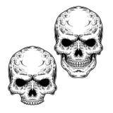 Ensemble de deux crânes Photos stock