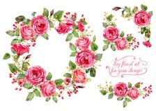 Ensemble de différentes fleurs rouges et roses, cadre, coins décoratifs FO Photo stock
