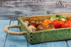 Ensemble de différentes sortes de tomates Photos stock