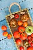 Ensemble de différentes sortes de tomates Images libres de droits