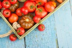 Ensemble de différentes sortes de tomates Images stock
