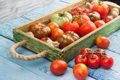 Ensemble de différentes sortes de tomates rouges photo stock