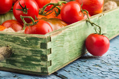Ensemble de différentes sortes de tomates rouges images libres de droits