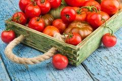 Ensemble de différentes sortes de tomates mûres dans le plateau en bois Photo libre de droits