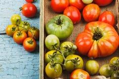 Ensemble de différentes sortes de tomates mûres dans le plateau en bois photographie stock libre de droits