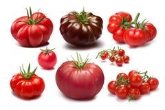 Ensemble de différentes variétés de tomate Images stock