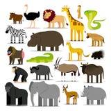 Ensemble de différents animaux africains d'isolement Images stock