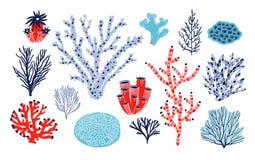 Ensemble de différents coraux et algue ou algues d'isolement sur le fond blanc Paquet d'espèces marines, créatures de mer profond illustration de vecteur