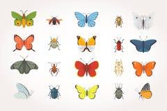 Ensemble de différents insectes dans le style de bande dessinée Collection de papillon et de scarabée illustration de vecteur
