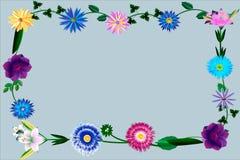 Ensemble de différents lis avec des feuilles et des bourgeons Photographie stock libre de droits