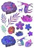 Ensemble de différents plantes, fleurs et animaux illustration stock