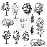 Ensemble de différents types arbres tirés par la main Image stock