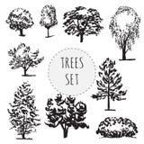 Ensemble de différents types arbres tirés par la main Photographie stock libre de droits