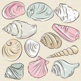 Ensemble de différents types des palourdes et de coquilles sur un Ba grunge beige Image stock