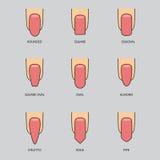 Ensemble de différentes formes des clous sur le gris Icônes de forme de clou Image libre de droits