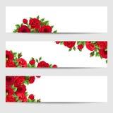 Ensemble de drapeaux de Web avec les roses rouges Illustration de vecteur Image libre de droits