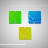 Ensemble de feuilles abstraites Photographie stock