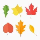 Ensemble de feuilles d'automne sur le fond blanc illustration libre de droits