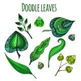 Ensemble de feuilles modelées de vert de griffonnage illustration stock