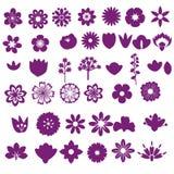 Ensemble de fleur Photos stock