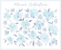 Ensemble de fleur d'aquarelle illustration stock