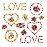 Ensemble de fleurs - cadres, lettres, coeurs illustration stock
