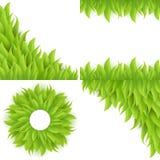 Ensemble de fond d'herbe verte Images libres de droits
