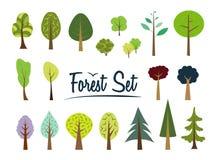 Ensemble de forêt de vecteur Différents arbres et buissons illustration de vecteur