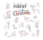 Ensemble de Forest Christmas Images stock