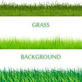 Ensemble de frontières horizontales d'herbe verte de ressort Collection d'herbe verte sur le fond blanc Photos libres de droits
