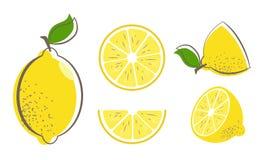 Ensemble de fruit de citron illustration de vecteur