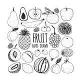 Ensemble de fruit dans le style de griffonnage illustration de vecteur