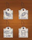 Ensemble de fruits de mer de 4 éléments de conception : méduses illustration libre de droits