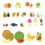 Ensemble de fruits frais et de baies sains d'isolement Illustration Libre de Droits