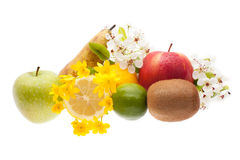 Ensemble de fruits sur le fond blanc Images stock
